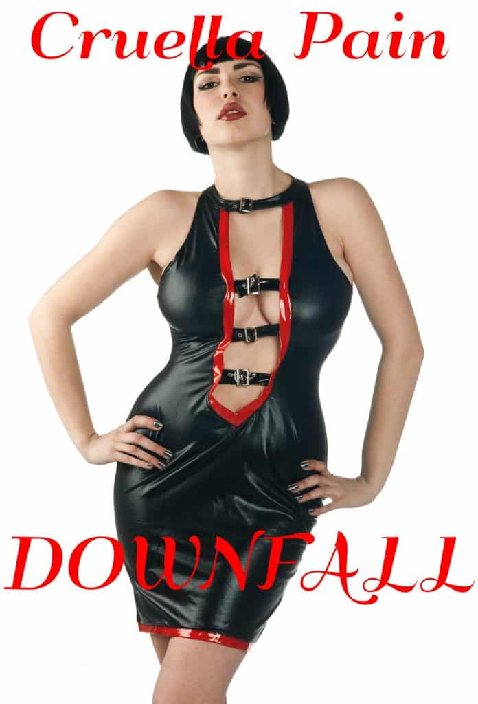 Downfall FinDom ebook